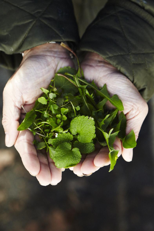 Weeds in Hand