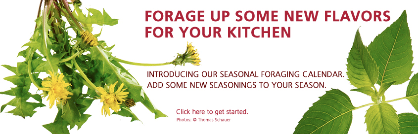 Forage Up Some New Flavors For Your Kitchen