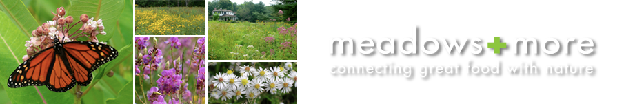 Meadows and More – Connecting Great Food With Nature