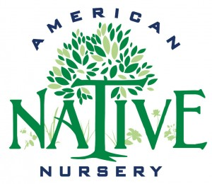 American Native Nursery
